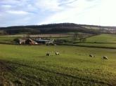Yare Farm