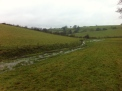 Flooded ditch