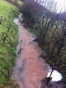 Flooded ditch below Caplor