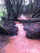 Flooded footpath 2