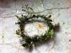 Solstice wreath 1
