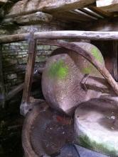 Caplor cider press 1