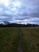 Wet walk home from Alfords Mill