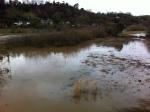 Flooded Wye at Hoarwithybridge