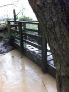 Footpath bridge nearly flooded
