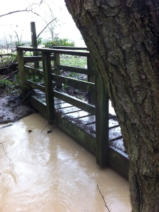 Footpath bridge nearly flooded