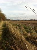 Cross country to Ledbury