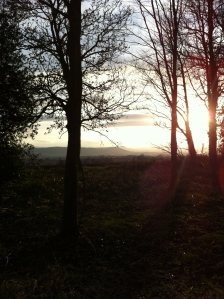 Sunset over Penyard Hill