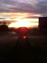 Staddle stone in sunset