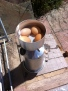 Storm kettle eggs