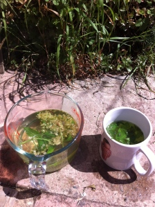 Elderflower and mint tea