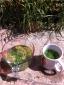 Elderflower and mint tea