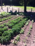 Garden at Hope Mansel/Bailey LaneEnd