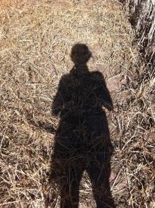 Walking through wheat