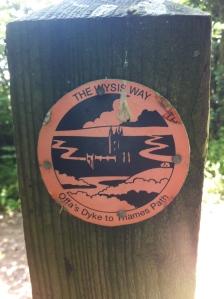 Wysis Way