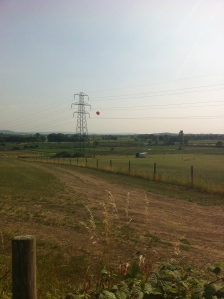 Helium strawberry and pylon at Over Farm PYO