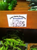 Over Farm broad beans
