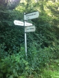 Forest signpost