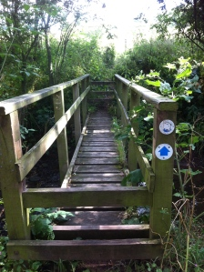 Wye Valley Walk bridge