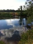 Outfall into Wye at Rotherwas/Hampton Bishop