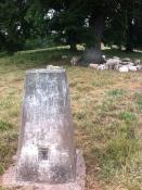 Capler Camp trigpoint