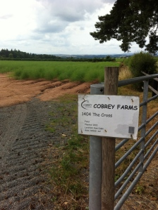 Cobrey land as far as How Caple