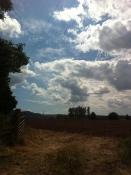 Clouds over Lea