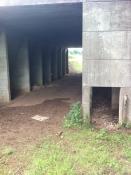 M50 footpath tunnel