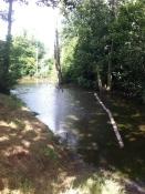 Lake at Timber Hall Farm