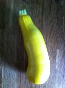 Giant courgette