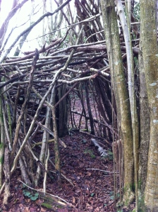 Den in the Athelstan's Wood