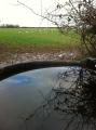 Water at Merrivale Farm
