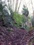 Knacker's Hole Grove
