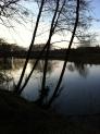 River Wye below Lyndor Wood again